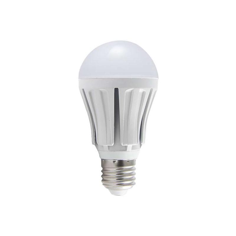 Ampoule LED E27 12W éclairage 100W