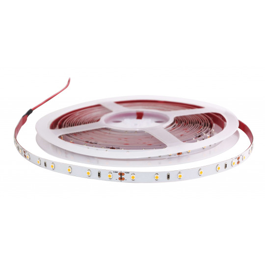 Ruban LED Blanc 24V 30 LED/m 4,8W/m 5m