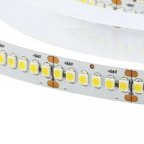Ruban LED Blanc haute luminosité DC24V 19,2W/m 5m étanche