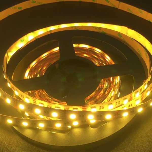 Ruban LED RGB+W 480LED 5m 25W/m étanche IP65