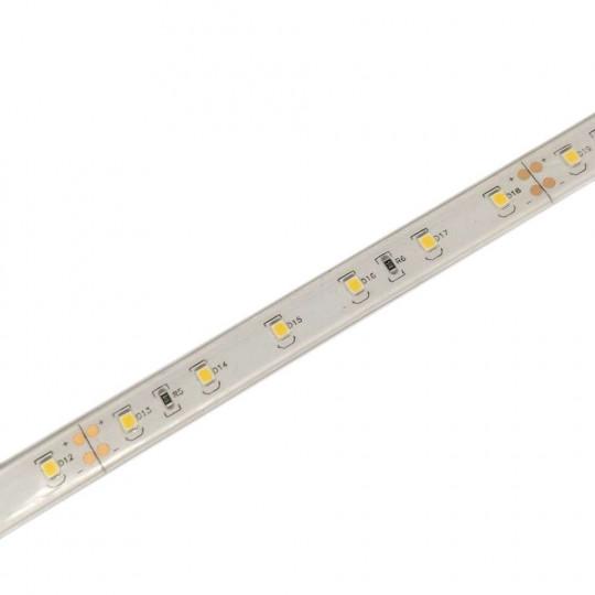 Ruban LED puissant 60 LED/m 11W/m étanche IP68 - Blanc Naturel 4000K