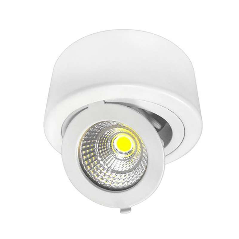 Plafonnier LED en Saillie 12W Rond Orientable