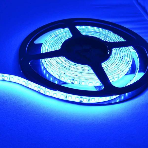 Ruban LED puissant 120 LED/m 9,6W/m IP20 Bleu 5m