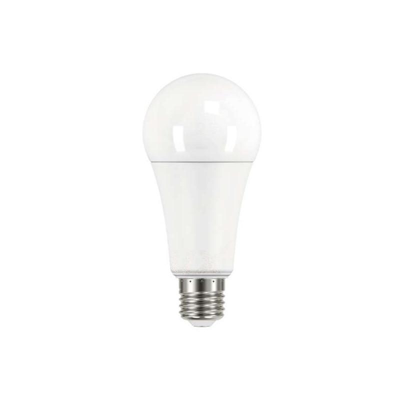 Ampoule LED E27 17,5W A67 équivalent...