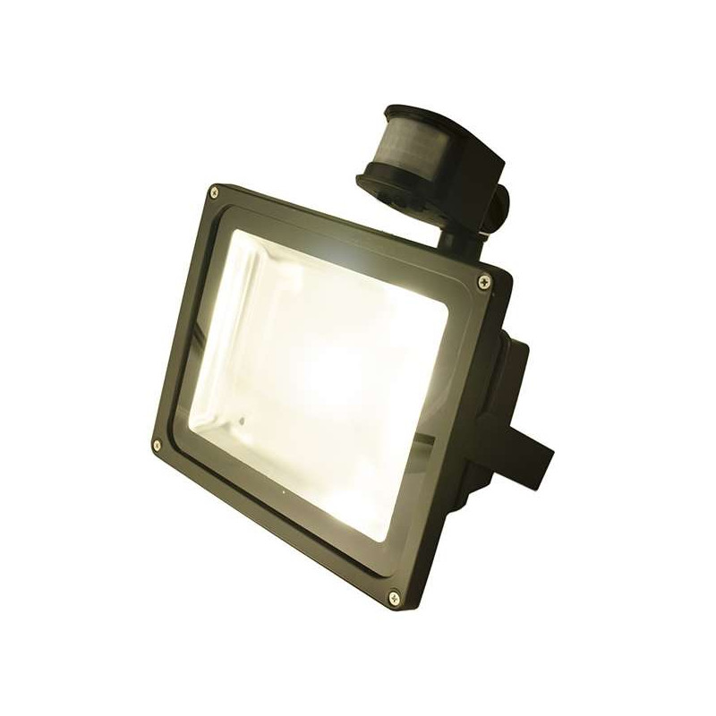 Projecteur LED 30W à détecteur (250W)
