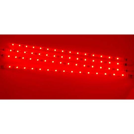 Ruban LED 5050 Blanc Froid 5 mètres 24V DC