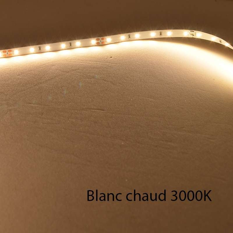 Ruban LED Blanc 60 LED/m 4,8W/m IP68...