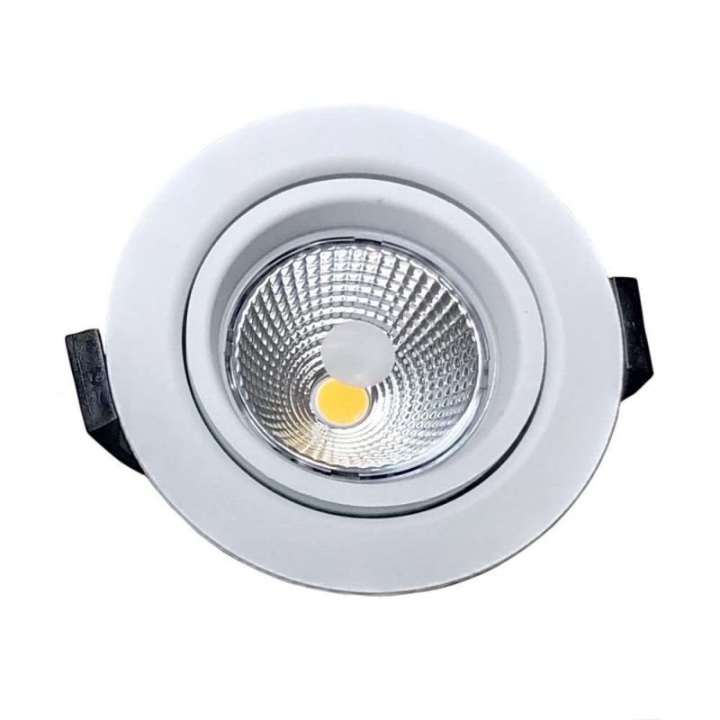 Spot LED 10W BBC RT2012 orientable...