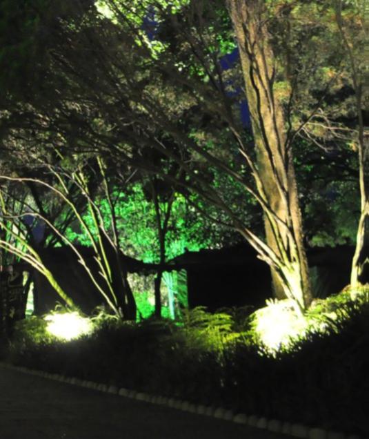 Eclairage d\'un jardin et d\'une terrasse - Blog Le Club Led