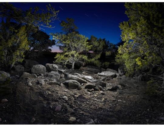 Un éclairage à LED pour créer des paysages surnaturels Le Club LED